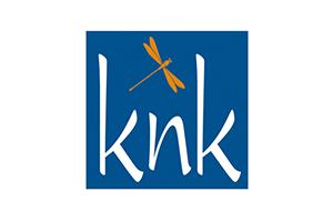 Knk431 Knk Business Software Ag