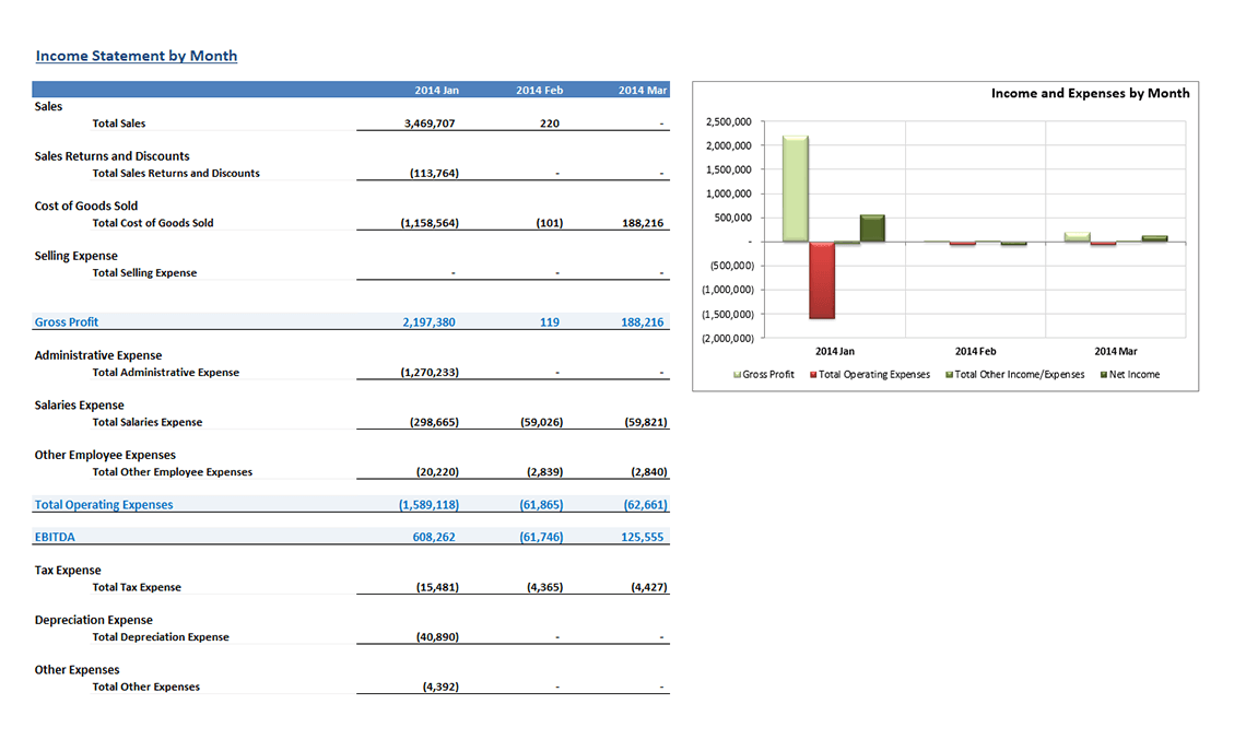 sample monthly income statement
