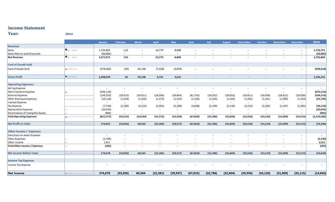 Gp008 Professional Income Statement Budget And Variance