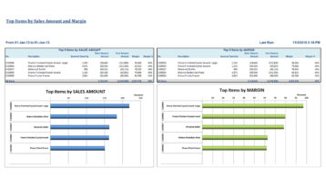 Nav038 Professional Top Items By Sales Volume And Margin