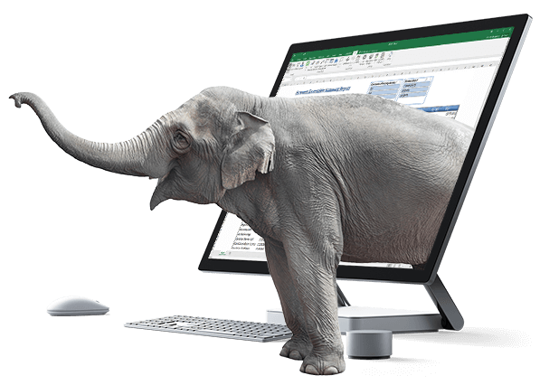 Elephant In Computer