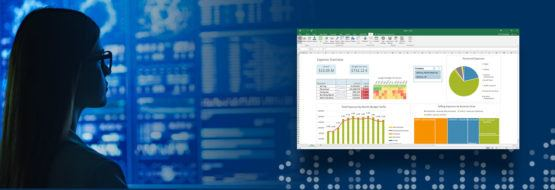 Blog The Sap Reporting Strategy