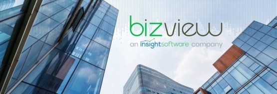 Bizview Acquisition