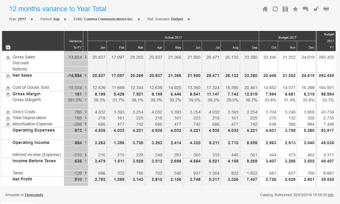 12 Months View Variance To Year Total Example Dashboard