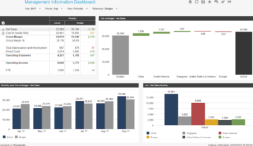 Management Information Example Dashboard