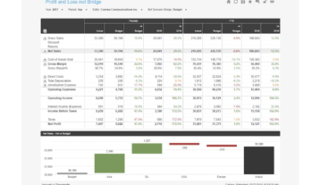 Profit And Loss Including Bridge Chart Example Dashboard