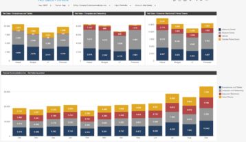Profit And Loss Review Example Dashboard