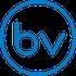 Bizview Logo