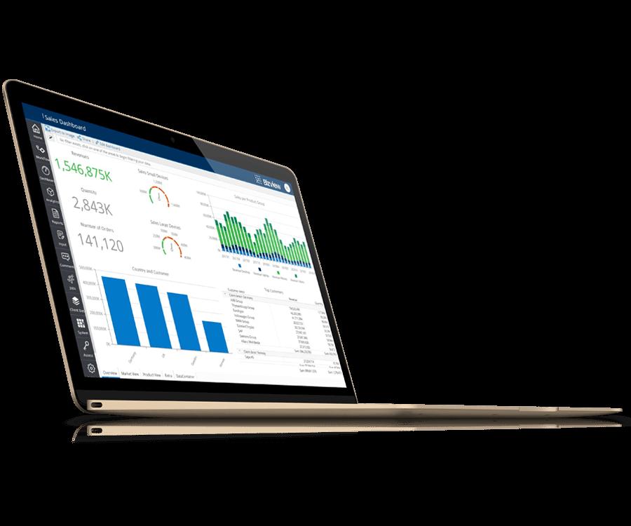 Bizview Solutions Budgeting Alignteam