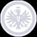 Eintrachtfrankfurt Gray 125